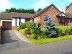 Thumbnail for sale in Hillfield, Norton, Runcorn, Cheshire