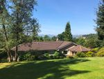 Thumbnail to rent in Callum's Hill, Crieff