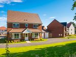 """Thumbnail to rent in """"Alnwick"""" at Blackthorn Crescent, Brixworth, Northampton"""