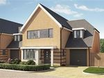 Thumbnail for sale in Bellway At Qeii, Howlands, Welwyn Garden City