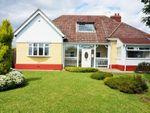 Thumbnail to rent in Gillas Lane, Houghton Le Spring