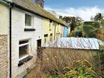 Thumbnail to rent in Rosebush, Clynderwen