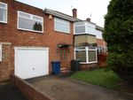 Thumbnail to rent in Rothbury Avenue, Gosforth