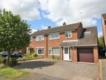 Thumbnail to rent in Heathbell Road, Newmarket