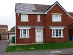 Thumbnail to rent in Petrel Way, Dunfermline, Fife