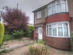 Thumbnail to rent in Newstead Rise, Shotley Bridge, Consett