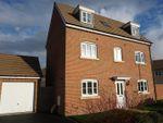 Thumbnail to rent in Toucan Street, Yarnbrook, Trowbridge