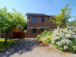 Thumbnail to rent in Selah Close, Allendale, Hexham