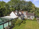 Thumbnail for sale in Esher Road, Hersham, Walton-On-Thames, Surrey