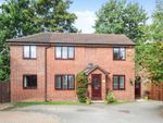 Thumbnail to rent in Westbourne Road, Selby