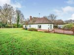 Thumbnail for sale in Hophurst Hill, Crawley Down, West Sussex