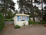 Thumbnail to rent in California Country Park Homes, Nine Mile Ride, Finchampstead, Berkshire