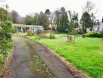 Thumbnail for sale in Penders Lane, Redruth, Cornwall