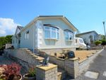 Thumbnail to rent in Marlais Park, Carmel, Llanelli