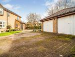 Thumbnail for sale in Sanderling Close, Letchworth Garden City, Hertfordshire, England