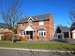 Thumbnail to rent in Charlecote Road, Great Notley, Braintree