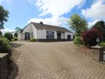 Thumbnail to rent in Dairyland Road, Straid, Ballyclare