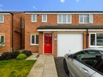 Thumbnail to rent in 24 Buckthorn Crescent, Stockton-On-Tees