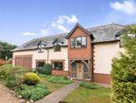 Thumbnail to rent in Dummer, Basingstoke, Hampshire