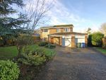 Thumbnail for sale in Beech Court, Ponteland, Newcastle Upon Tyne