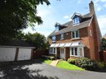 Thumbnail to rent in St. Lawrence Park, Chepstow