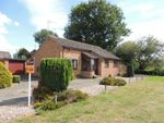 Thumbnail for sale in Kingfisher Road, Downham Market