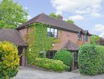 Thumbnail to rent in Moyleen Rise, Marlow