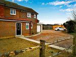 Thumbnail to rent in Muddy Lane, Wisley, Woking