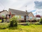 Thumbnail for sale in High Beech Road, Bream, Lydney