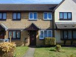 Thumbnail to rent in Stewart Young Grove, Grange Farm, Kesgrave, Ipswich Suffolk