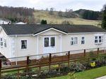 Thumbnail for sale in Blenkinsopp Castle, Greenhead, Brampton, Cumbria.