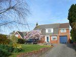 Thumbnail for sale in 8 Colvin Close, Exmouth, Devon