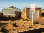 Thumbnail to rent in Dunedin Grove, Halfway, Sheffield