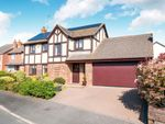 Thumbnail for sale in Cotswold Close, Eastbourne