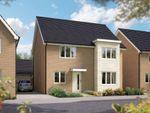 """Thumbnail to rent in """"The Canterbury"""" at Toddington Lane, Wick, Littlehampton"""