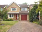Thumbnail to rent in The Lawns Close, Melbourn, Royston