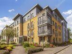 Thumbnail to rent in 36/19 Barnton Grove, Barnton