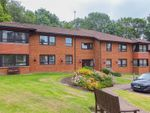 Thumbnail to rent in Ty Gwyn Road, Penylan, Cardiff