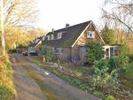 Thumbnail for sale in Malthouse Lane, Peasmarsh, Rye, East Sussex