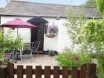 Thumbnail to rent in Trehalvin, Trewidland, Liskeard