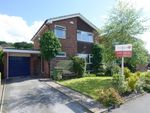 Thumbnail for sale in Moorland View Road, Walton, Chesterfield