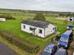 Thumbnail for sale in Hope Farm Bungalow, Peening Quarter Road, Wittersham, Kent