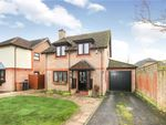 Thumbnail for sale in Campion Drive, Romsey, Hampshire