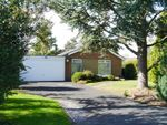 Thumbnail for sale in Willow Place, Ponteland, Newcastle Upon Tyne