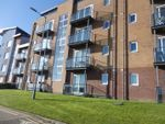 Thumbnail to rent in Pentre Doc Y Gogledd, Llanelli