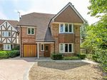 Thumbnail to rent in Alexander Place, Oxted, Surrey