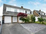 Thumbnail for sale in Rayne, Braintree, Essex