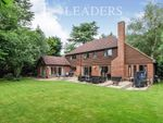Thumbnail to rent in Littleworth Lane, Esher