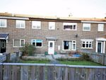Thumbnail to rent in Badger Close, Hall Farm, Sunderland