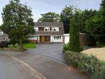 Thumbnail to rent in Quail Green, Wightwick, Wolverhampton